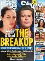 brad-pitt-angelina-jolie-break-up